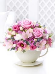 Pastel Teacup and Saucer Arrangement
