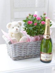 Celebratory Baby Girl Basket